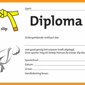 Diploma Geel/Oranje